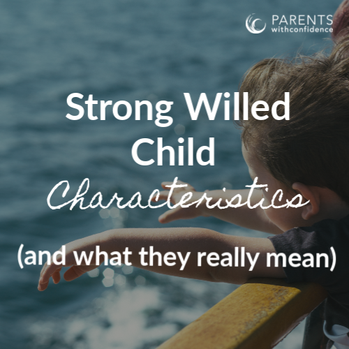 strong willed child personality traits
