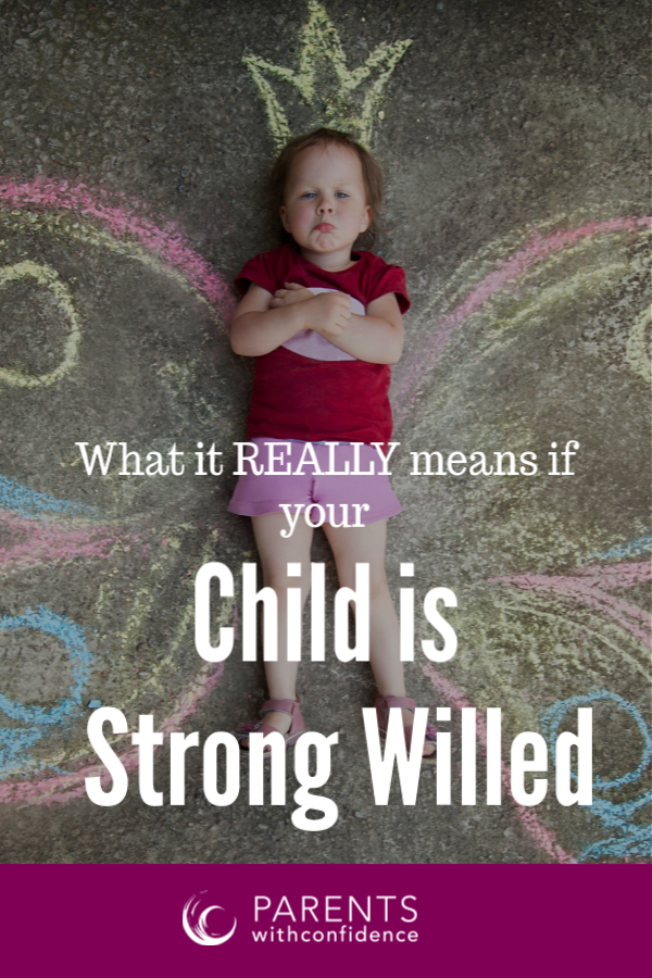 strong willed child characteristics